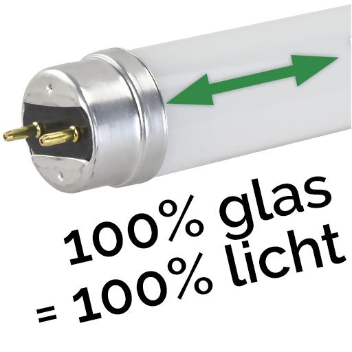 100% Glas = 100% Licht